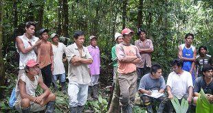 amazonia-habitantes-620x330