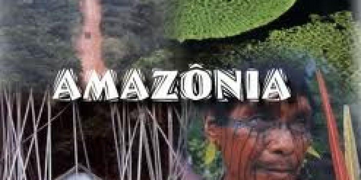 Territorios prestados: El caso de los contratos de cesión en uso de las tierras de comunidades nativas