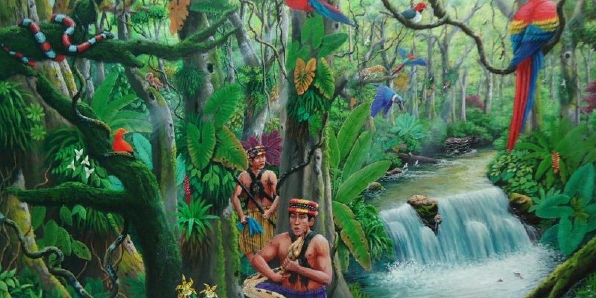 Tenencia Forestal en Territorios Indígenas