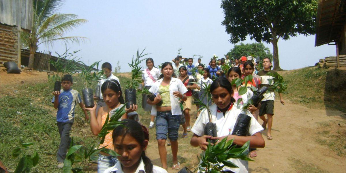 Expertos de la ONU exigen más derechos ambientales en América Latina