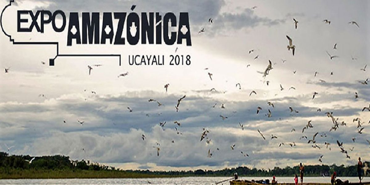 Agenda post Expoamazónica