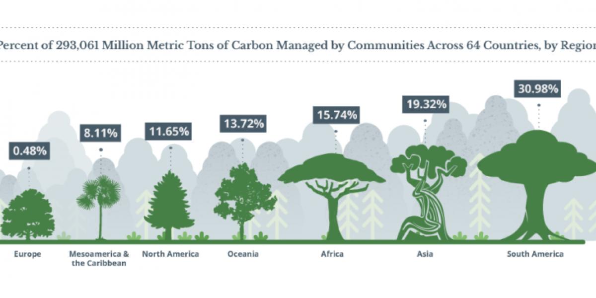 Comunidades indígenas protegen 5 veces más carbono