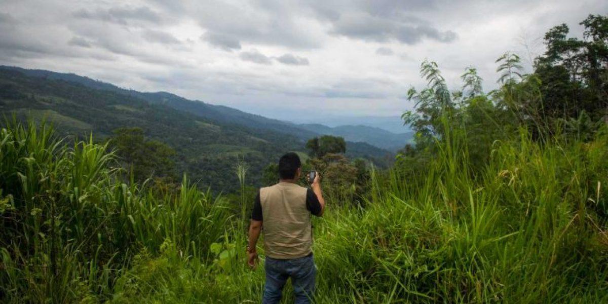 Devastación en la Amazonía