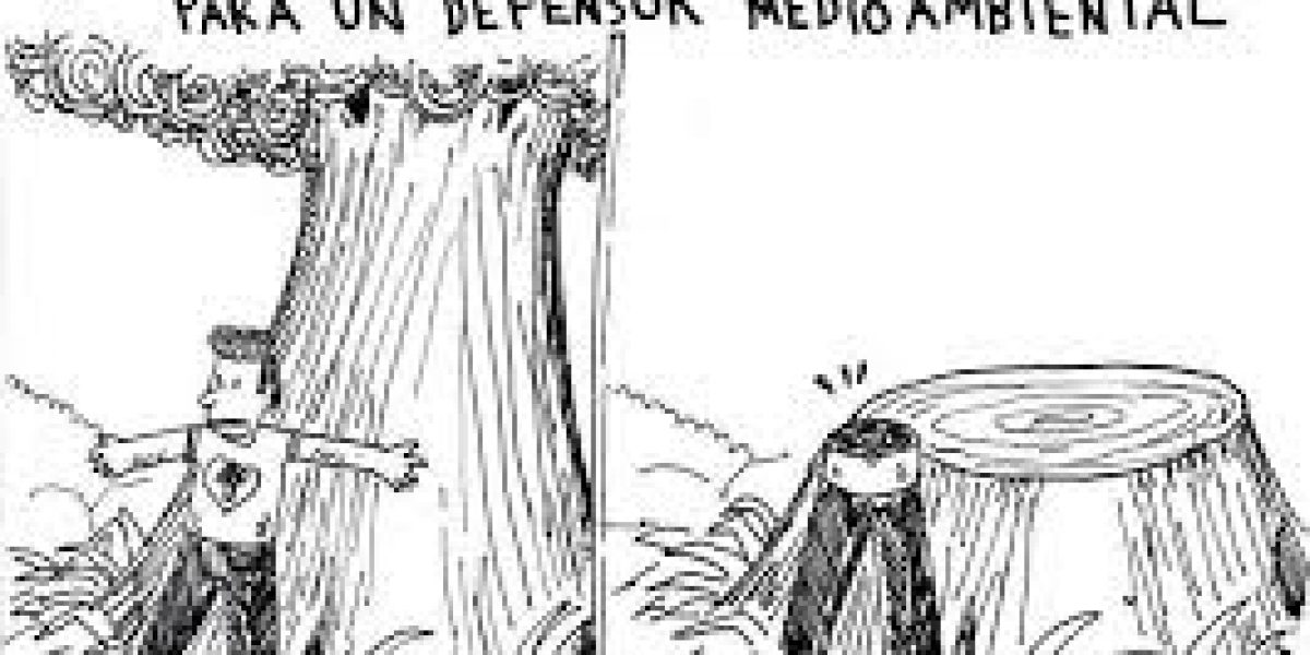 Ocho errores capitales de la gestión forestal en el Perú