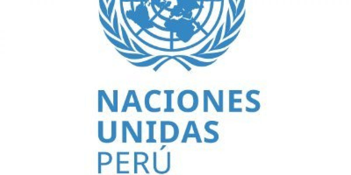 Relator de Naciones Unidas sobre DDHH en Perú