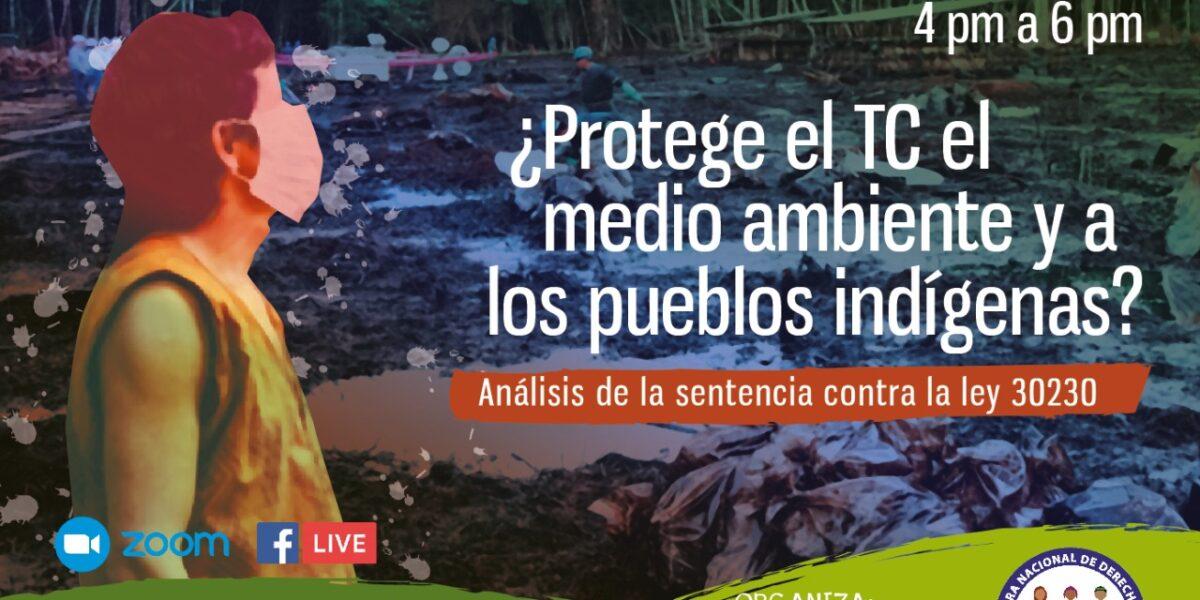 Ley Anti-ambiental y Tribunal «Constitucional»
