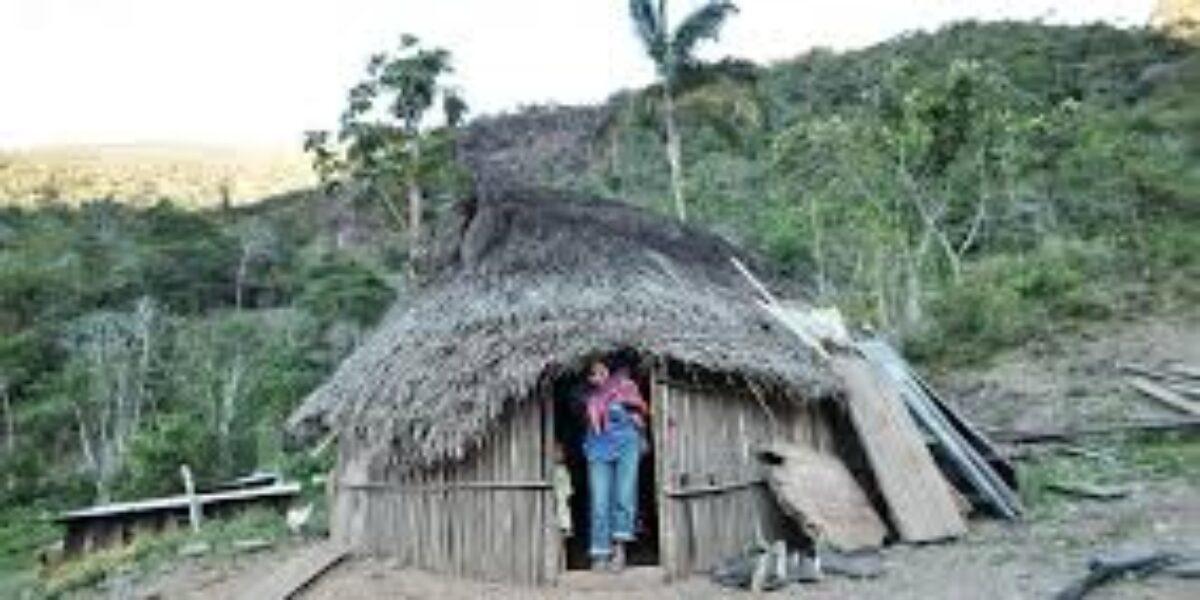 En día de Pueblos Indígenas, un llamado de la DP