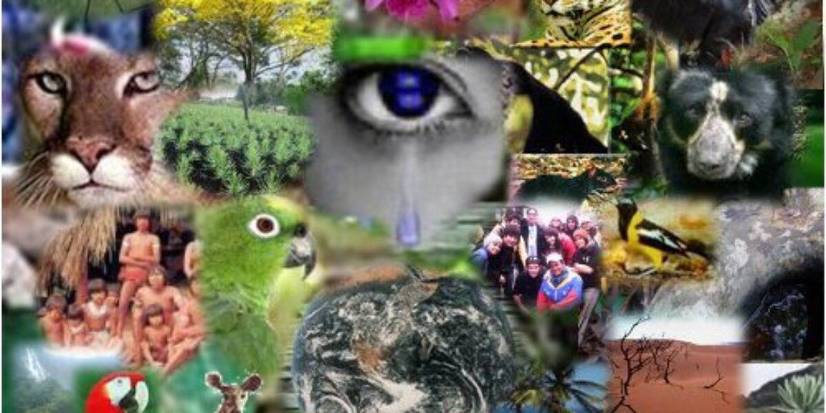 La Tragedia Ambiental de América Latina