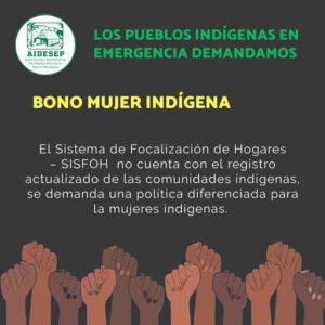 Bono Mujer Indígena